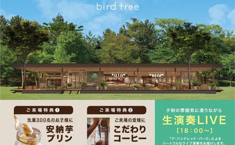 千里南公園のパークカフェ bird tree 2月24日(日)にお披露目会 誰でも参加可能!